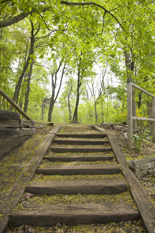Stairs in a Park stock photo