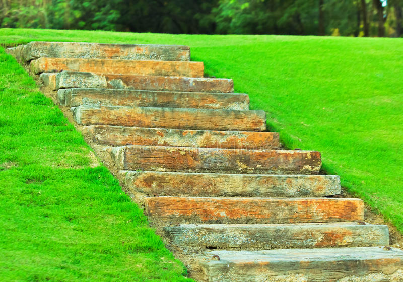 Stairs soil in park. A path through the garden royalty free stock photo