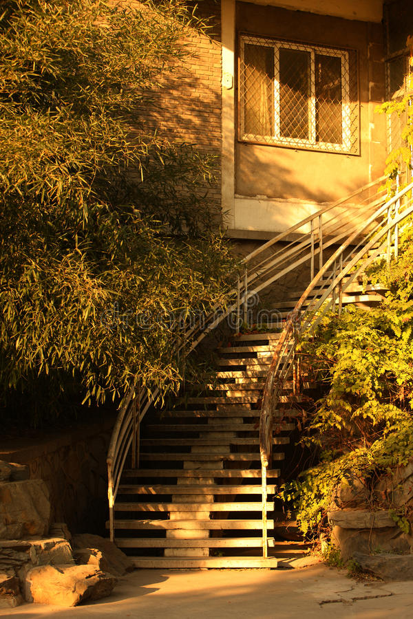 Download Stairs in sunlight stock photo. Image of green, sunlight - 23869984