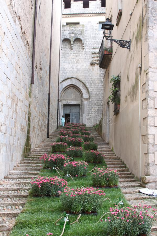 Stairs to Girona Cathedral with flowers royalty free stock photos