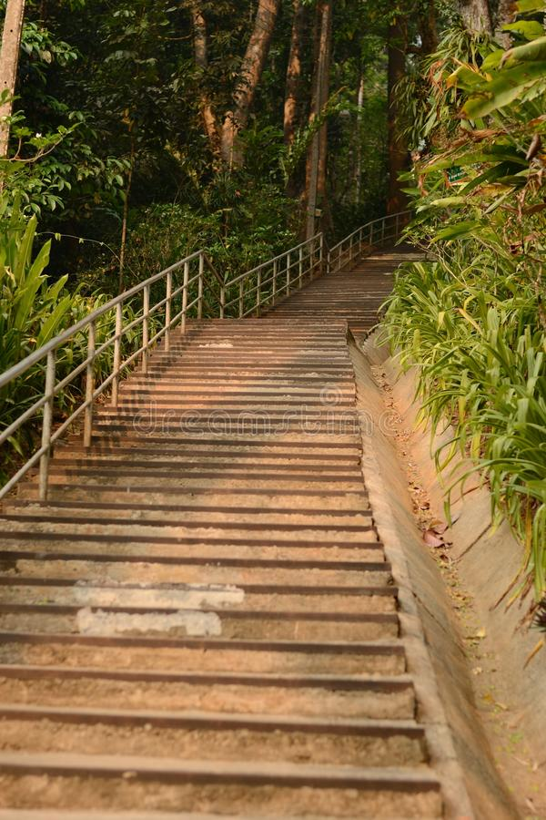 Stairs to the mountain. Stairs up to the mountain in Thailand royalty free stock images