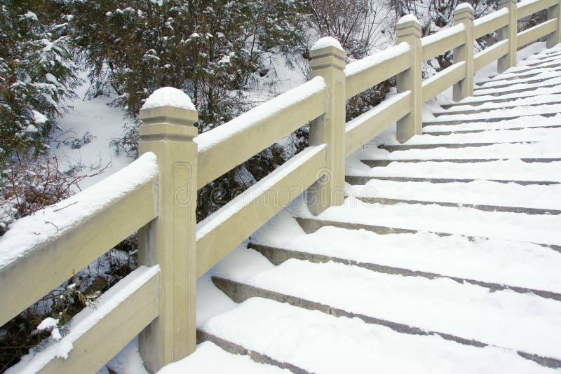 Download Stairway stock image. Image of cement, winter, tree, wintertime - 23653895