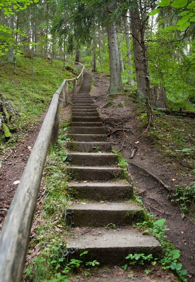 stairway fotografia de stock royalty free