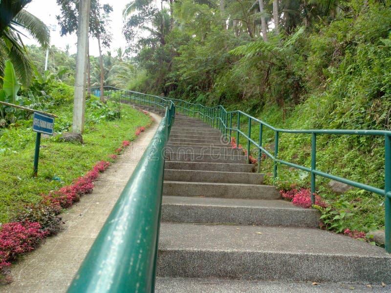 stairway immagini stock