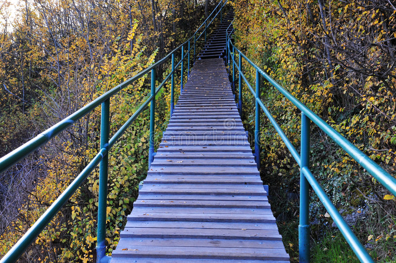 Download Stairway stock photo. Image of landscape, hike, stairway - 7331550
