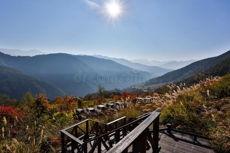 Stairway in alpine landscape royalty free stock photos