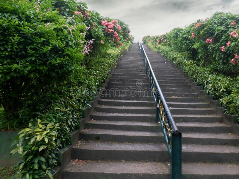 Stairway in a flowery hill royalty free stock photography