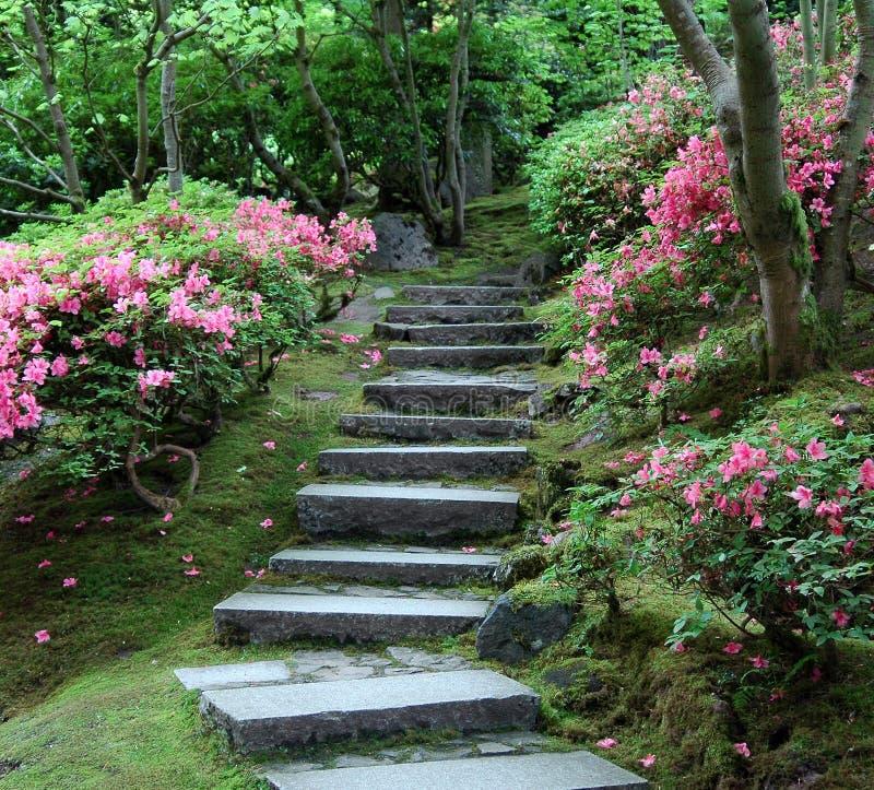 Stairway japonês do jardim fotografia de stock royalty free
