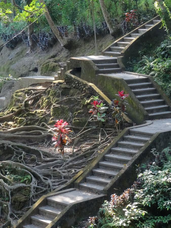Stairway in the jungle of Goa Gajah temple in Bali stock images
