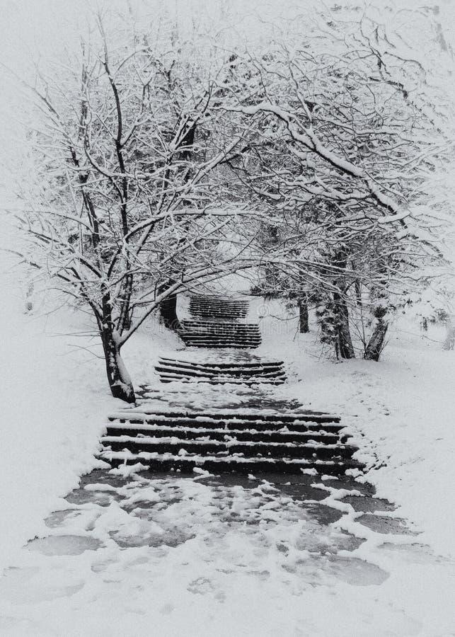 Stairway no inverno foto de stock