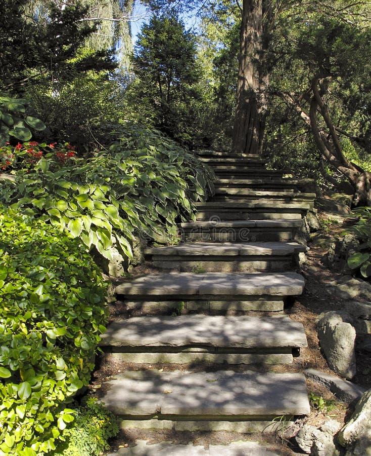 stairway ornamental сада стоковое изображение