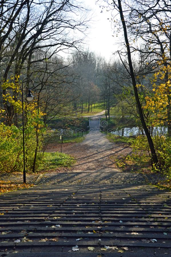 Stairway in the park during last days of fall - vertical composition. Stairway going down to the bridge in the park surrounded by golden and yellow leaves during royalty free stock photography