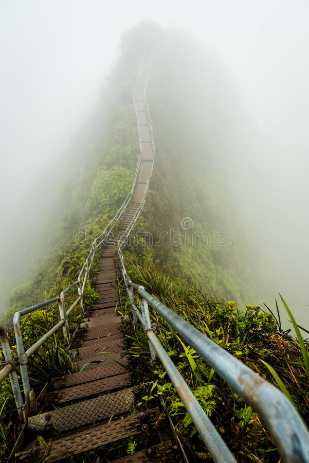 Stairway to Heaven in Oahu island Hawaii coverd by morning fog royalty free stock image