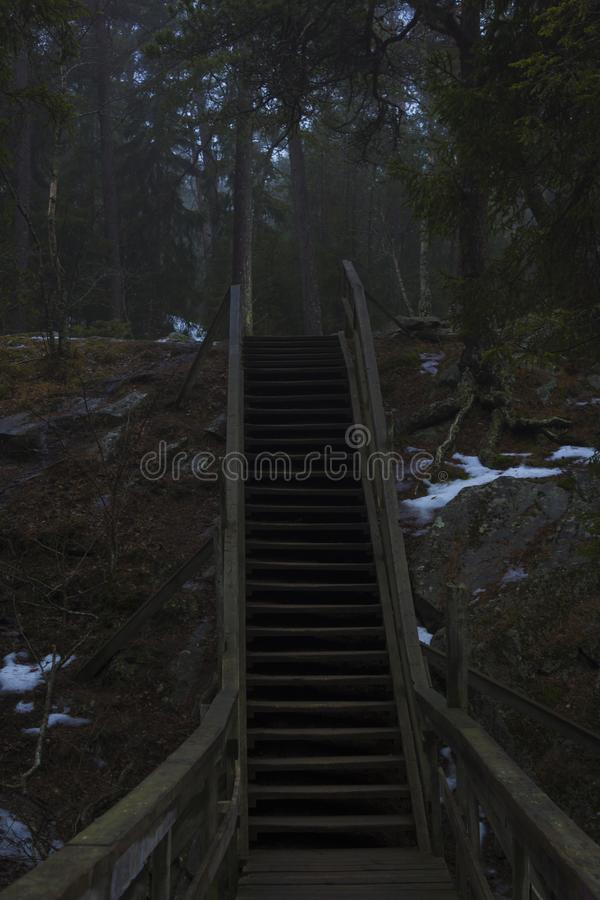 Stairway up a mountain, to a forest. Nature reserve in Sweden stock images