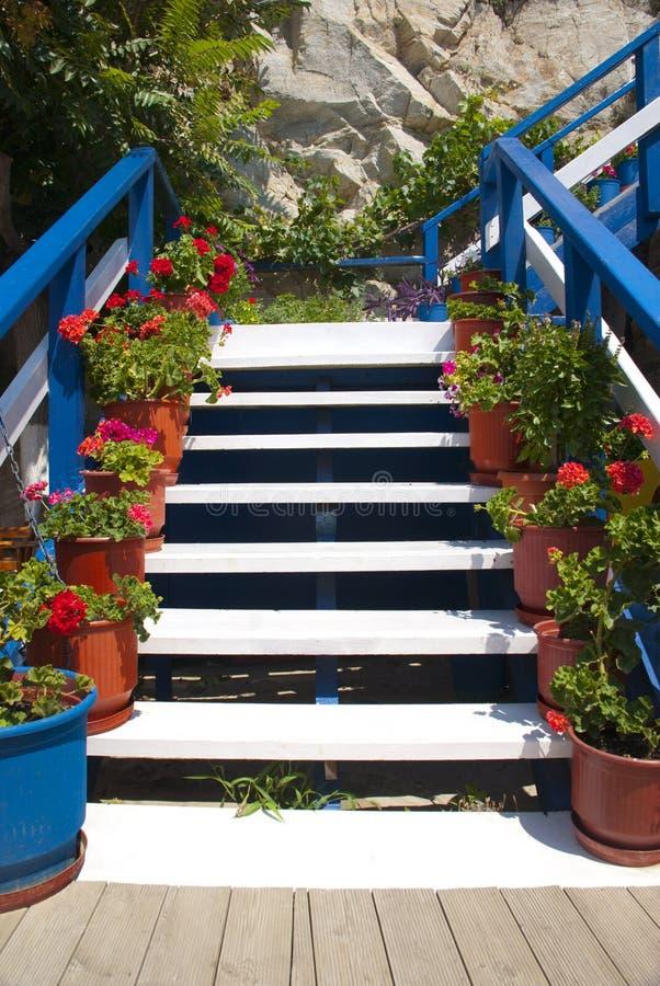 Stairways com flores imagens de stock