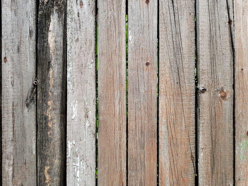 Stajni drewnianej deski tło Grunge drewniana ?cienna tekstura Drewnianej tekstury drzewna natura, tło textured zdjęcia royalty free