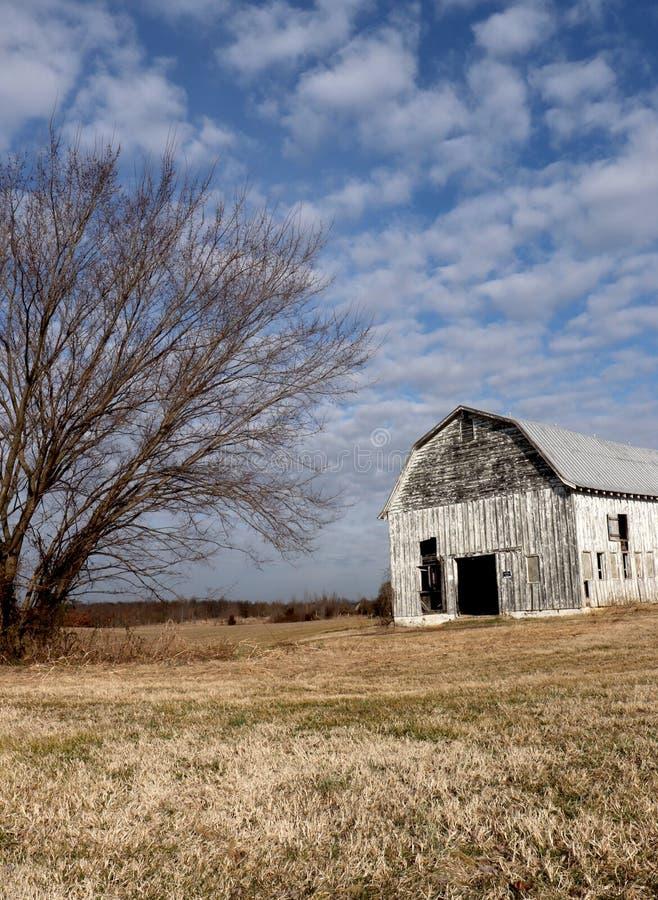 Stajnia i Pojedynczy drzewo Wraz z chmura Nabijającym ćwiekami niebem i Uśpioną trawą Robimy To Nieodpartej zimy scenie obraz stock