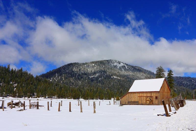 Stajnia i pole z Świeżym wiosna śniegiem blisko Lassen Powulkanicznego parka narodowego, Północny Kalifornia zdjęcia royalty free