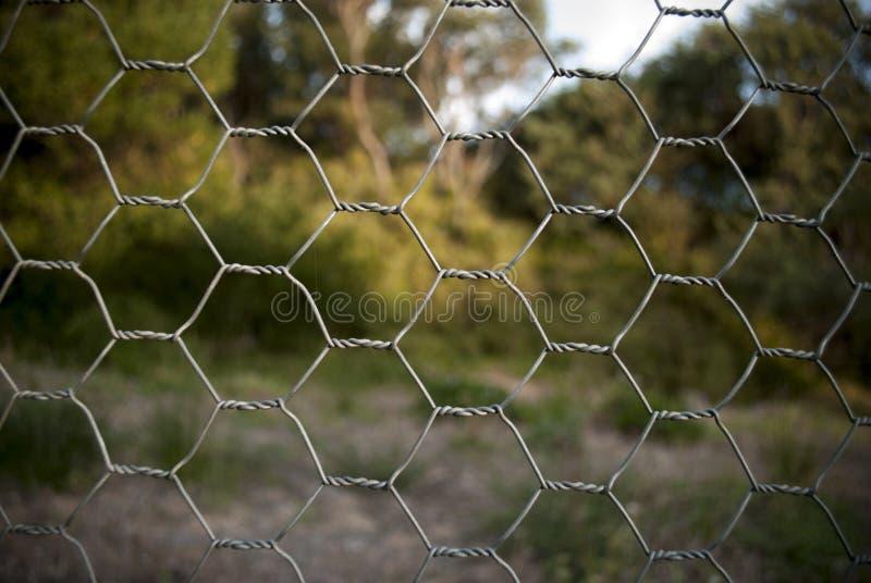 Staket för feg tråd arkivbilder
