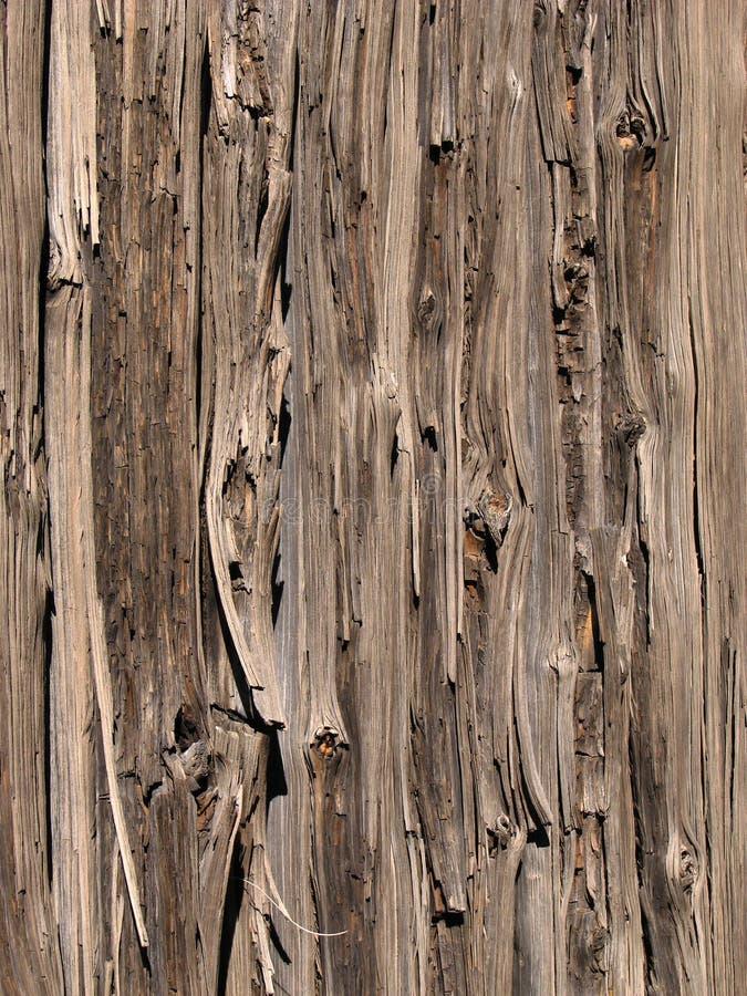 staket ridit ut trä royaltyfria foton