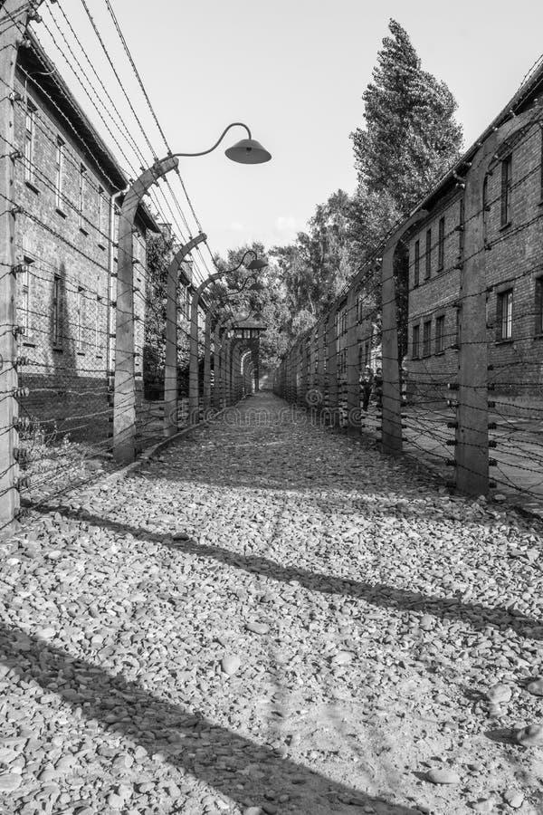 Staket under spänning i Auschwitz-Birkenau arkivbilder