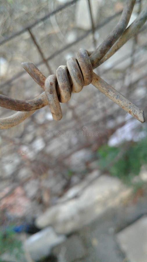 Staket Wire arkivbild