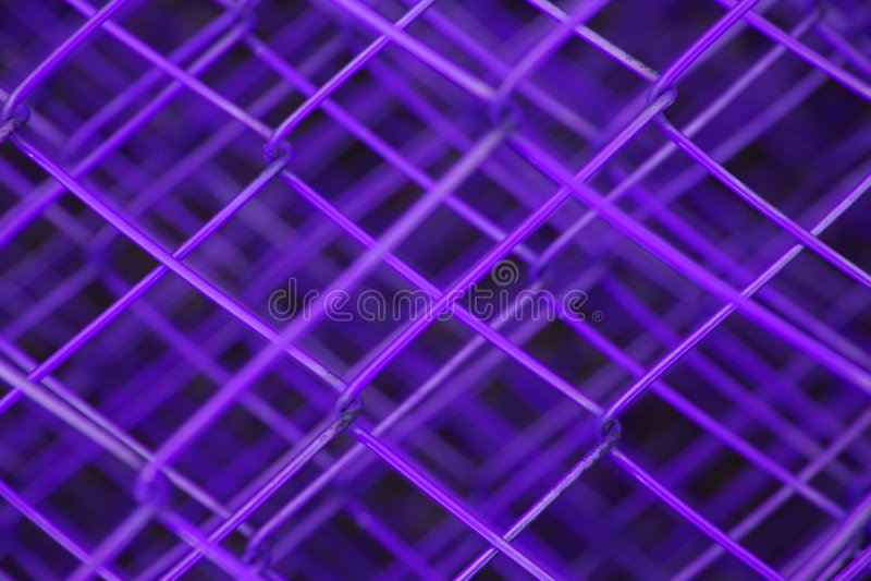 Staketpurple Royaltyfria Bilder