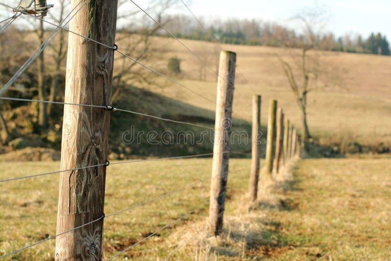 stakettråd royaltyfri fotografi