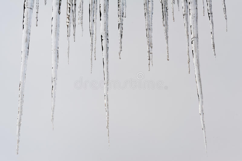 Stalactites. On a white background. To reinforce the concept of ice and cold stock photography