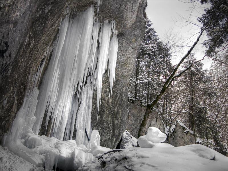 stalagmites льда стоковая фотография