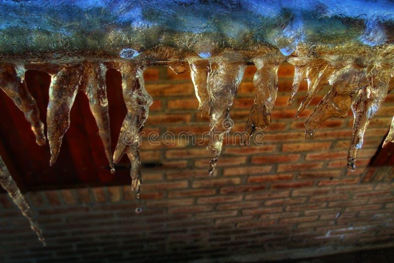Stalaktit av is på taket royaltyfri bild