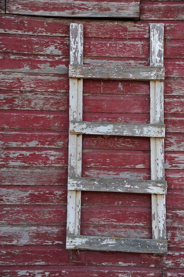 Staldeurladder royalty-vrije stock foto's