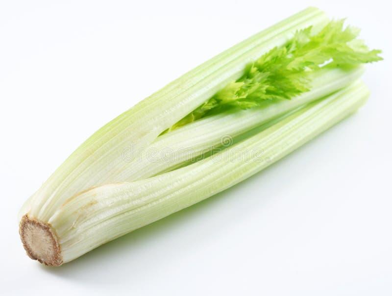 Stalk Of Celery Stock Photos