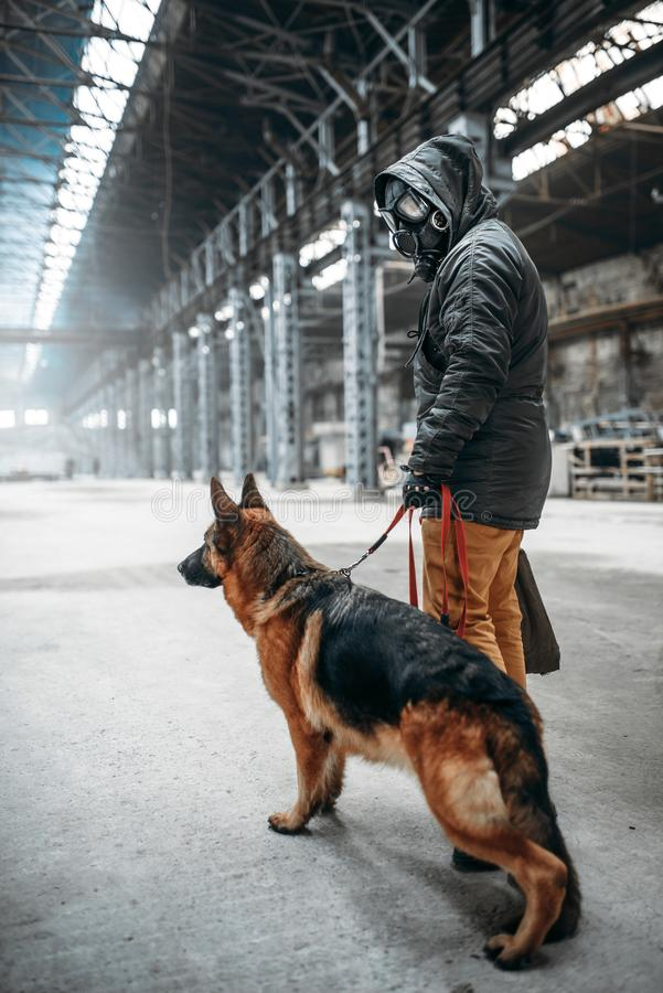 Stalker in gas mask and dog in abandoned building. Stalker soldier in gas mask and dog in abandoned building, survivors after nuclear war. Post apocalyptic world royalty free stock image