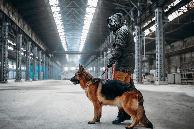 Stalker in gas mask and dog in abandoned building. Stalker soldier in gas mask and dog in abandoned building, survivors after nuclear war. Post apocalyptic world stock images