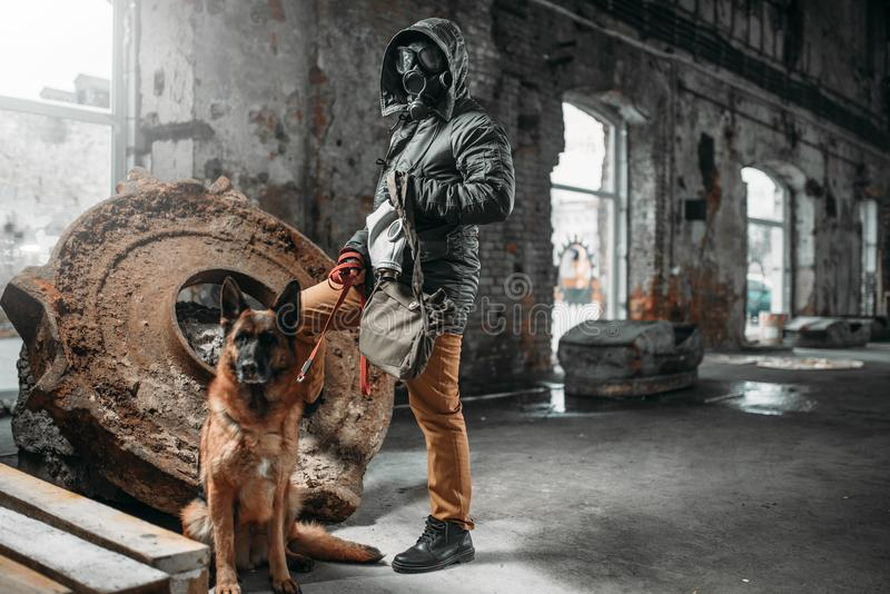 Stalker in gas mask and dog in ruins, survivors. In danger zone after nuclear war. Post apocalyptic world. Post-apocalypse lifestyle, doomsday, judgment day royalty free stock photo