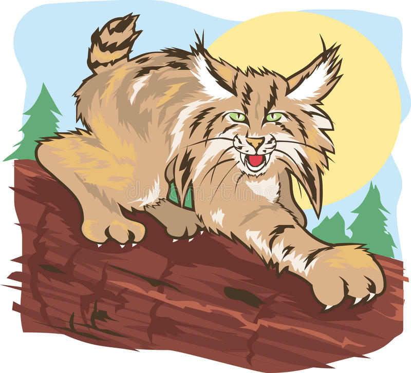 Download Stalking Lynx stock vector. Illustration of wild, forest - 24090229