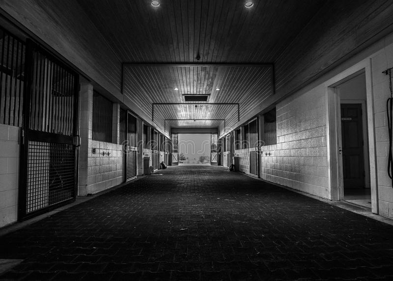 Stall. Beautiful spring morning view of horse stalls, in black and white stock image