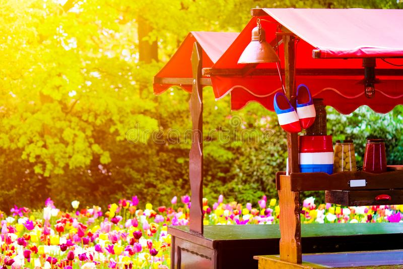 Stall with traditional Dutch symbols in national colors photographed against sunset light with blurred tulips in the background. royalty free stock images