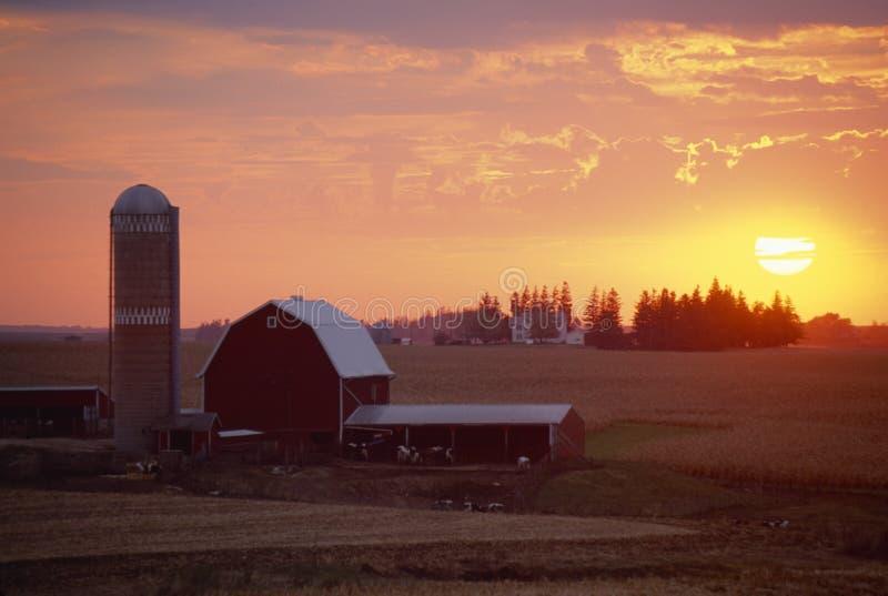 Stall und Silo am Sonnenuntergang, stockfotografie