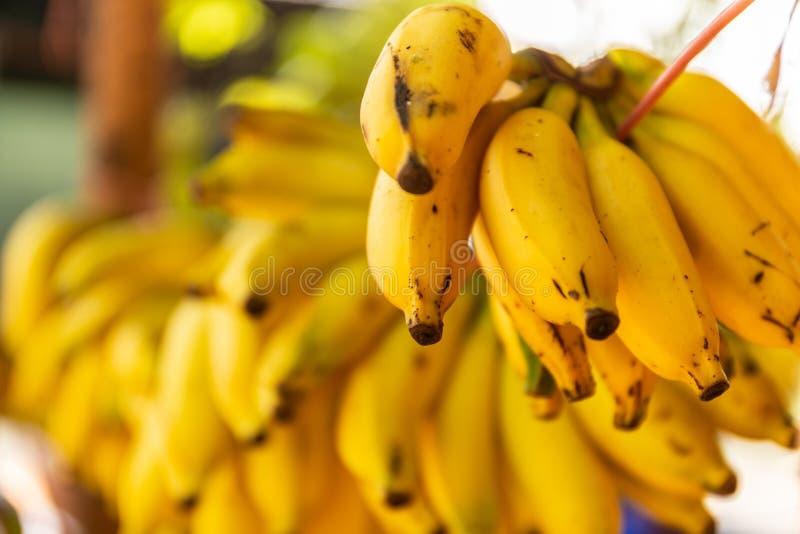 Stalle de rue avec des groupes de bananes photos stock