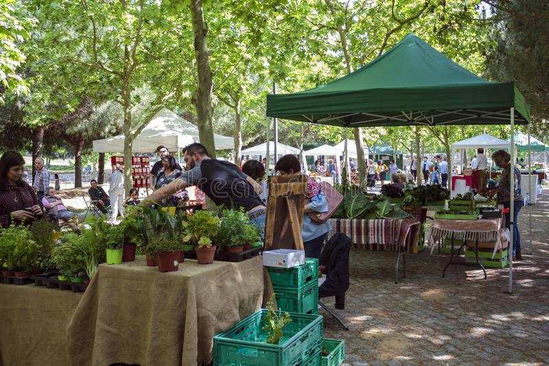Stalles de marché de la nourriture des agriculteurs avec des produits biologiques photographie stock libre de droits