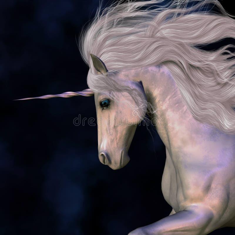 Free Stallion Royalty Free Stock Photo - 20888235