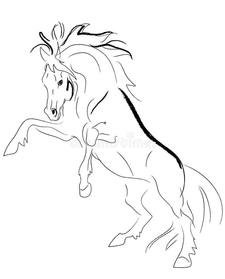 Stallion zieht Vektor auf