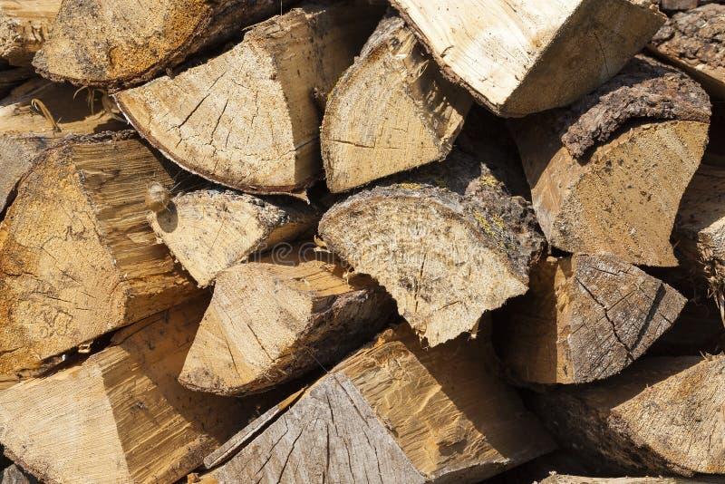 Stam av ett sågat trä royaltyfria bilder