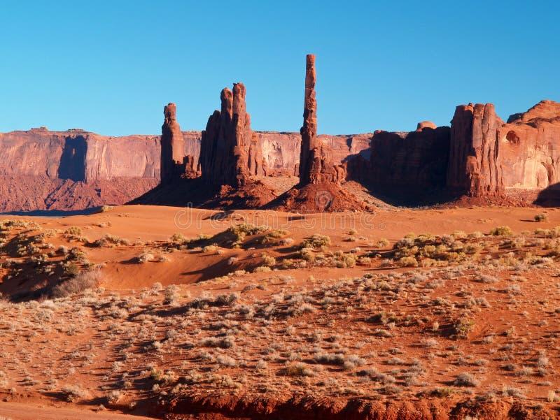 stam- dal för monumentnavajopark arkivbild