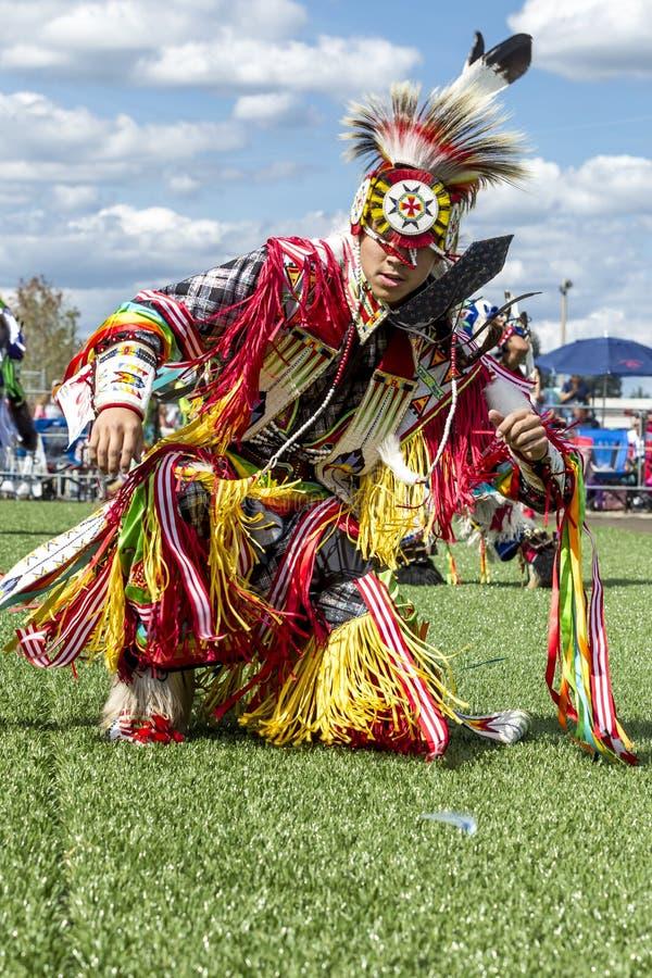 Stam- dans på powwowen arkivbilder