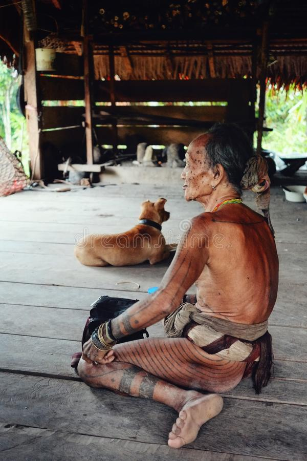 Stam- fläder och medicinman som framlägger hans skyddande tatueringar som accordi arkivfoton