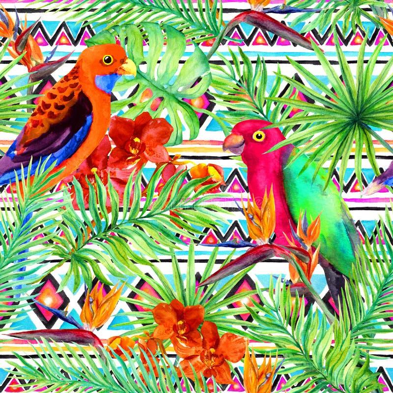 Stam- modell, tropiska sidor, papegojafåglar seamless bakgrundsperson som tillhör en etnisk minoritet vattenfärg arkivbilder
