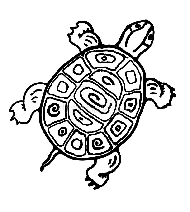 stam- sköldpadda stock illustrationer